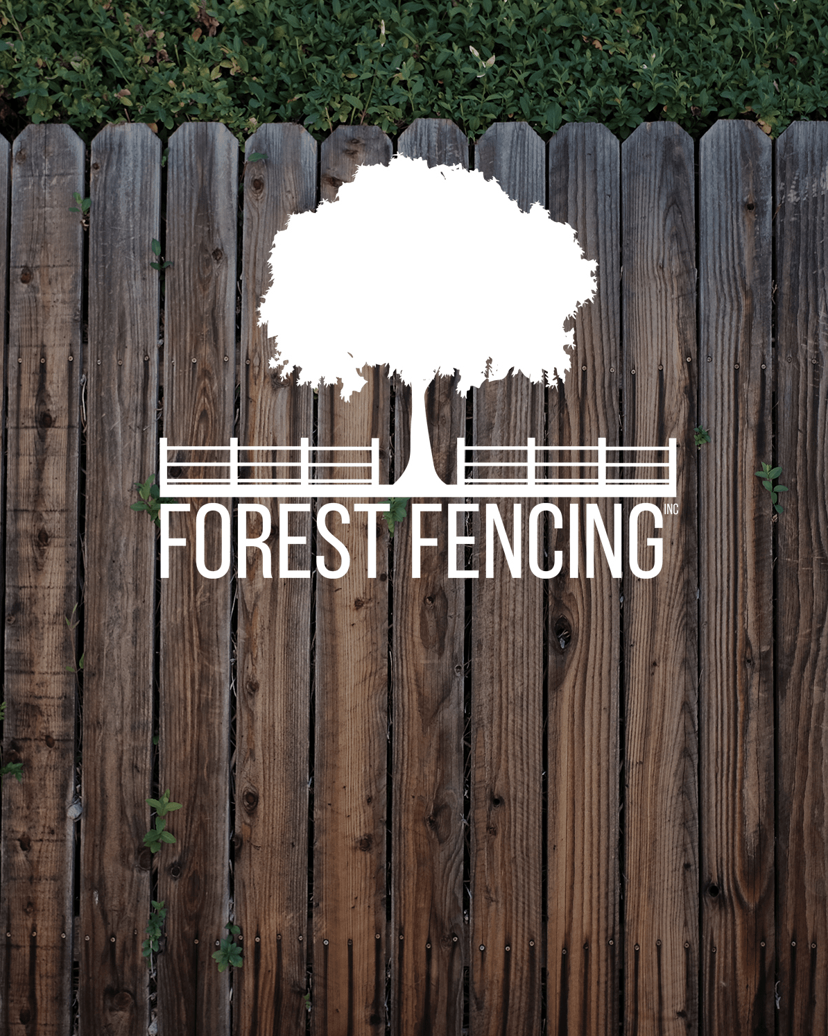 Forest Fencing Logo Creation